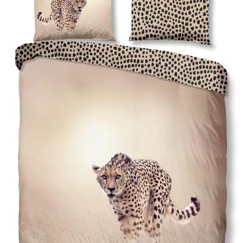 Cheetah le Guépard
