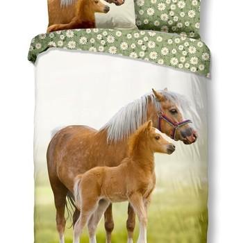 Maman et tout petit poney